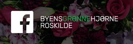Byens Grønne Hjørne Roskilde Facebook